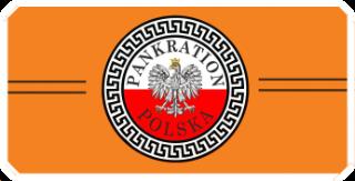 logo tafisa